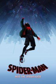 Spider-Man: Into the Spider-Verse (2018) ????????????????