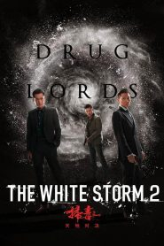The White Storm 2: Drug Lords (2019)
