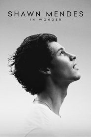 Shawn Mendes: In Wonder (2020)