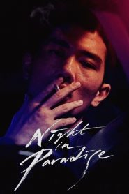 Night in Paradise (2021)